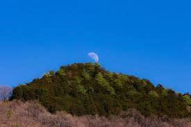 今朝は濃霧 朝乃山・照ノ富士