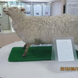北海道編3振り返り(36)士別市立博物館
