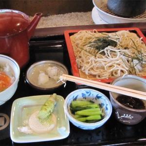 安曇野(6)昼飯もわさび