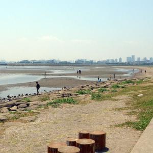 葛西臨海公園から堀切菖蒲園(1)