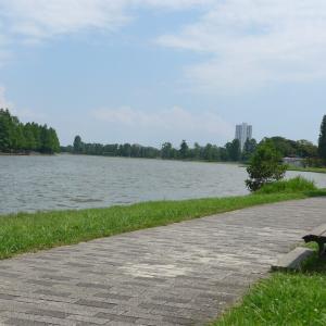 水元公園(2)