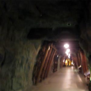 東北東海岸を走る。その1いわき周辺(4)石炭化石館②