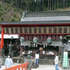 太平山の桜(3)