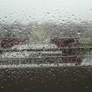 """本日の春の嵐が """"新型コロナウィルス"""" を洗い流してくれるとよいが…"""