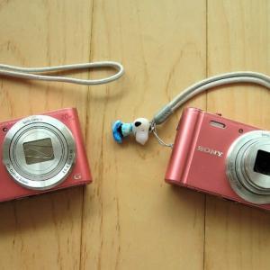 双子のマイ・カメラ ~~ ♪♪