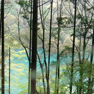 下津井渓谷四国カルストの景色