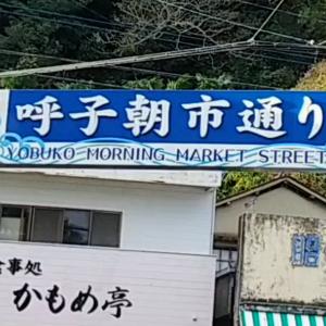 着物1枚帯1本で九州旅行その2 佐賀県呼子の朝市(動画有り)