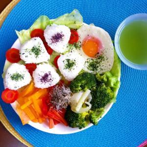 【Miho's和ごはん】ミニミニおにぎりと野菜もり