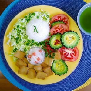 【M's和ごはん】高野豆腐の甘辛煮と夏野菜もり