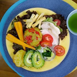【M's和ごはん】カレーピラフ風炊き込みご飯と蒸し鶏と夏野菜もり