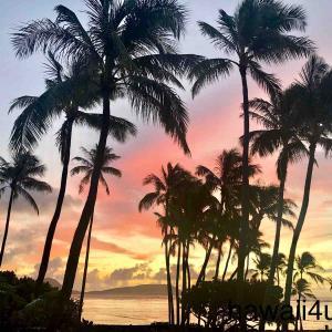 死ぬまでに一度は泊まってみたい憧れのハワイのホテル☆カハラ ホテル&リゾートを一挙公開!