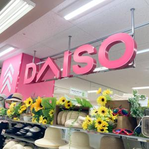 この夏も新商品が続々!ダイソー店内で気になった収納アイテムピックアップ