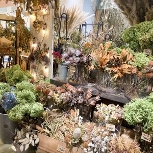 秋に飾りたいドライフラワーが豊富に揃う!sbotanicalで見つけた注目インテリアグリーン
