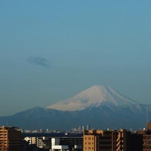新雪に覆われた真白き富士