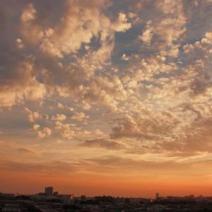 夕焼雲(高積雲)
