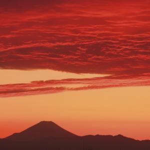 夕焼雲(高積雲)と富士山