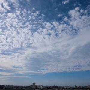 房状雲(巻積雲)