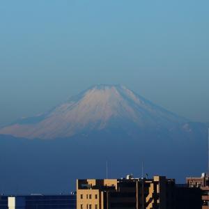 房総からの朝富士