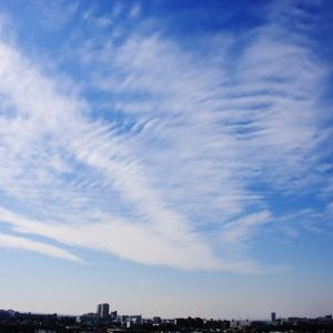 房状雲(巻雲)