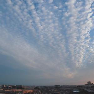 偏西風の雲