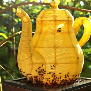 こんな蜂の巣見たことない! ハチと芸術家が作り上げたコラボアートの数々