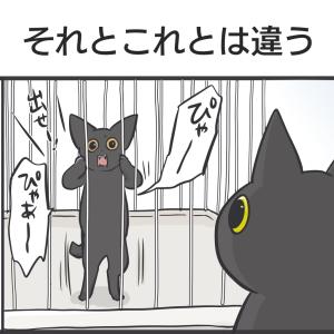 PECO更新のお知らせ(4コマ)/猫たちの写真