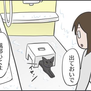 アヤちゃんとお風呂場