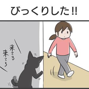 PECO更新のお知らせ(4コマ)/水が好きなアヤちゃんと影響されるスミちゃん