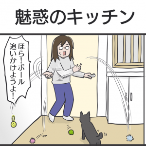PECO更新のお知らせ/我が家の猫写真