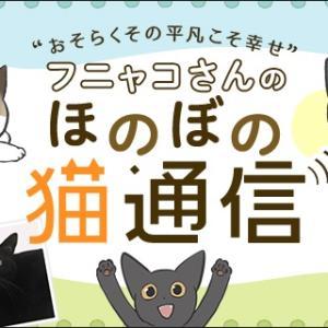 アイリス更新のお知らせ(新商品ナピューレお試し)と猫写真