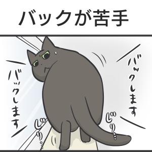 PECO更新のお知らせ/カーペットの下にもぐる猫写真など