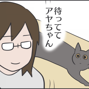 猫の投薬に思わぬ障害があった