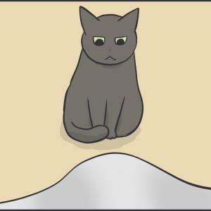 同居猫を見る視線が冷たい猫
