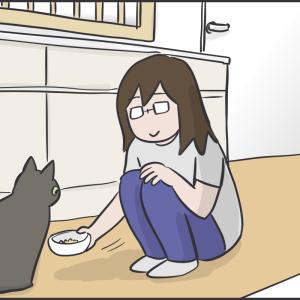 猫のダイエットのために食べる部屋を分けた結果
