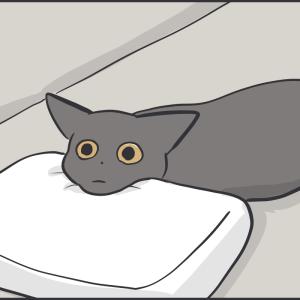 寝ている黒猫の平べったいレベル