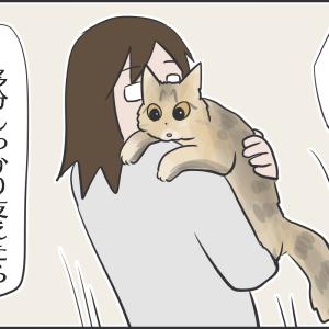 抱っこされ方が下手すぎる実家猫