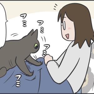 嬉しいけどつらかった猫のフミフミ