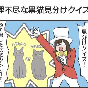 PECO更新のお知らせ/寝そべる猫たち写真