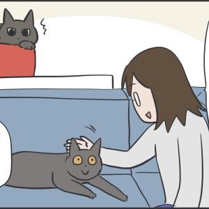 いつもクールな猫も褒められたい