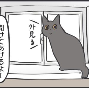 ひとりで外を見られない猫