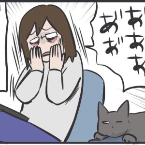 ただ猫に慰めてほしかった