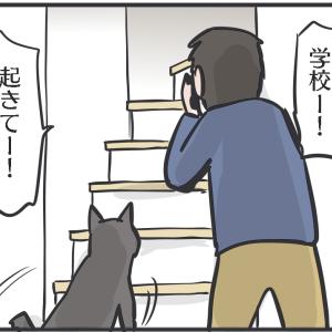 すごいのは娘と猫の絆だった