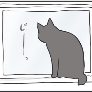 気が長い猫