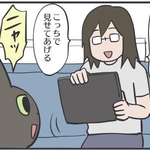 画面の左側に居たい猫