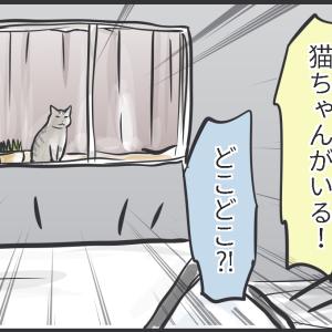 猫を見ると変態になってしまう猫好き親子