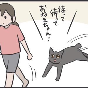 私も猫にこういう噛まれ方してみたい