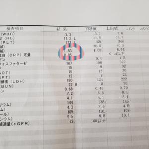 3/27 婦人科の診察~リムパーザ