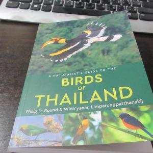 鳥の和名調べ
