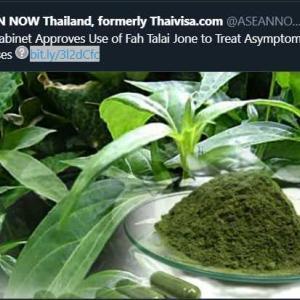 タイ民間療法のCovid-19治療薬