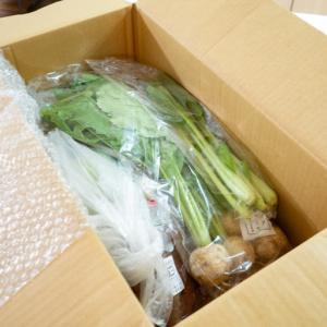 [パルシステムのお試しセットレポ]届いた有機野菜で作った料理